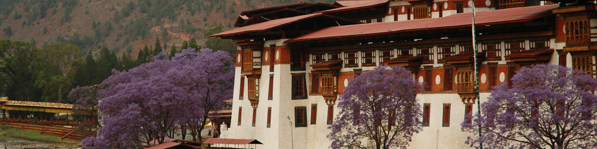 Destintion Bhutan  Realizing